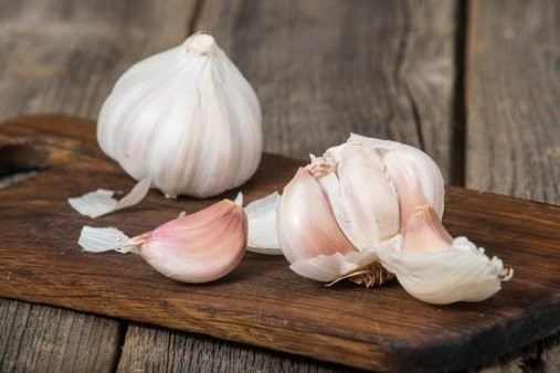 Garlic Paranormal Properties
